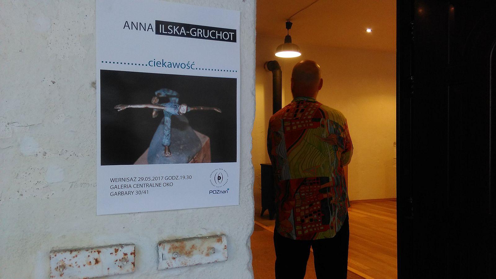 Centralne Oko - wystawa A. Ilskiej Gruchot (9)  Foto: Tomasz Dworek