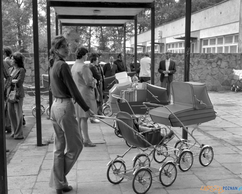 Punkt sprzedaży wózkow dziecięcych - 3-4 czerwca 1978  Foto: Stanisław Wiktor /Cyryl