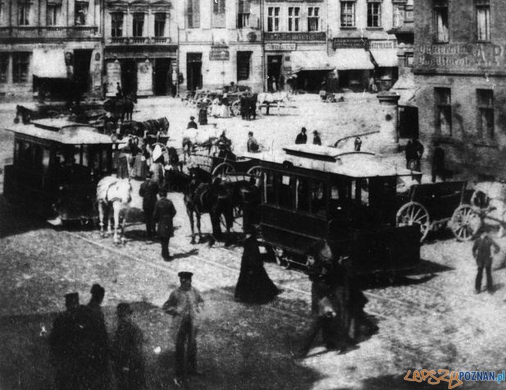 Wagony_6_i_7_tramwajow_konnych_na_Starym Rynku  Foto: Archiwum MPK