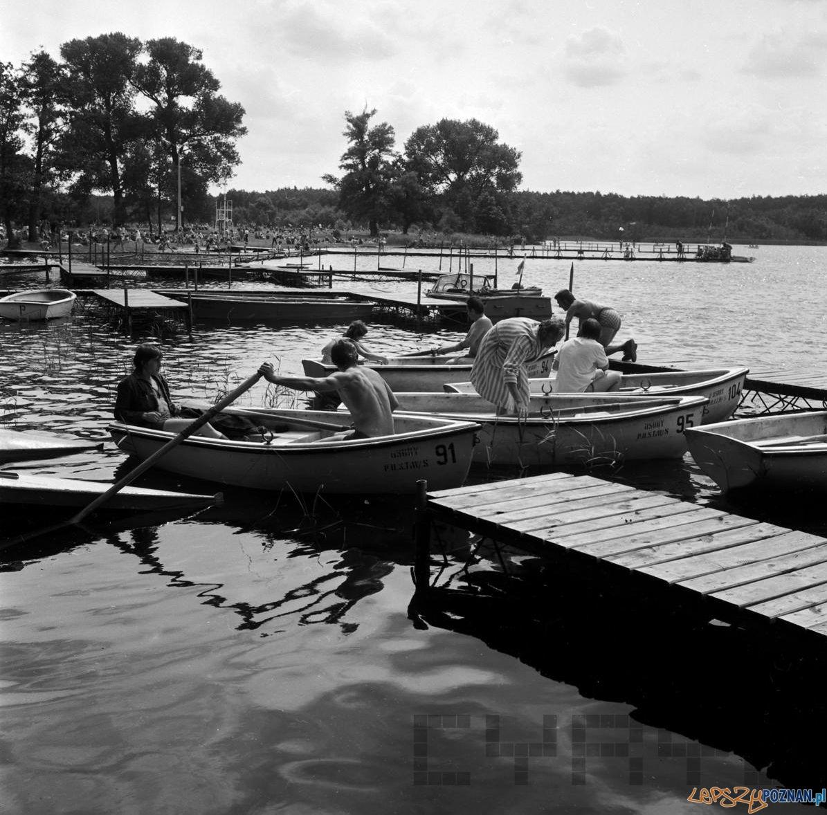 Strzeszynek - jezioro 10.08.1974  Foto: Stanisław Wiktor / Cyryl