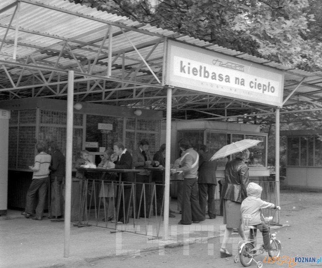 Bufet z kiełbasą na ciepło w park Kasprzaka, dziś  Wilsona - 27.08.1978  Foto: Stanisław Wiktor / Cyryl
