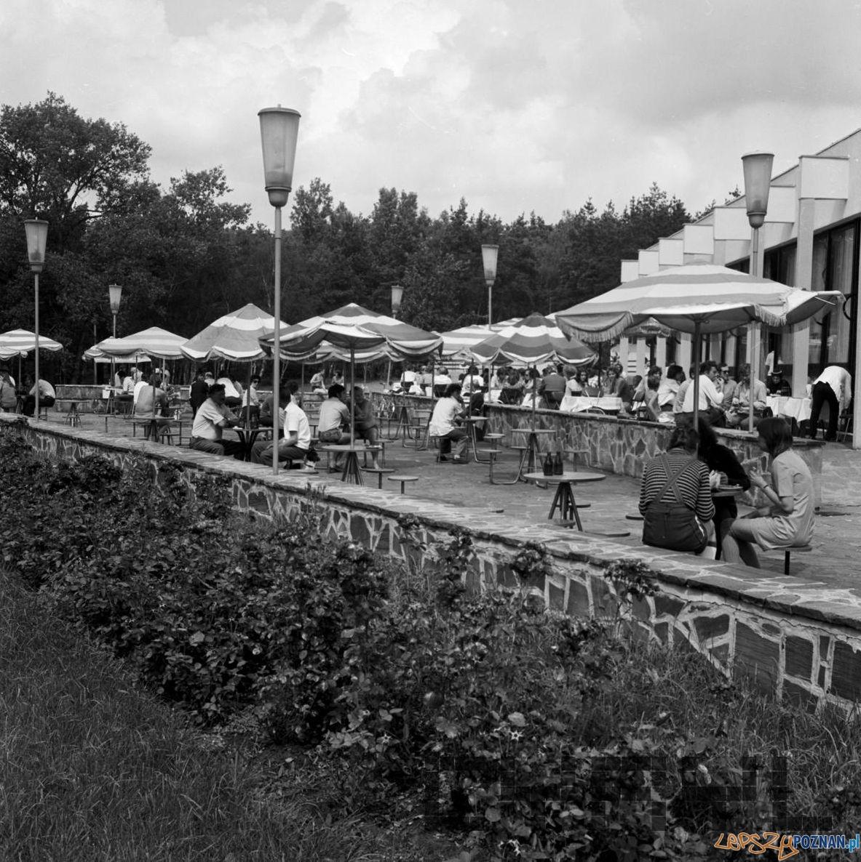 Strzeszynek - gastronomia 10.08.1974  Foto: Stanisław Wiktor / Cyryl