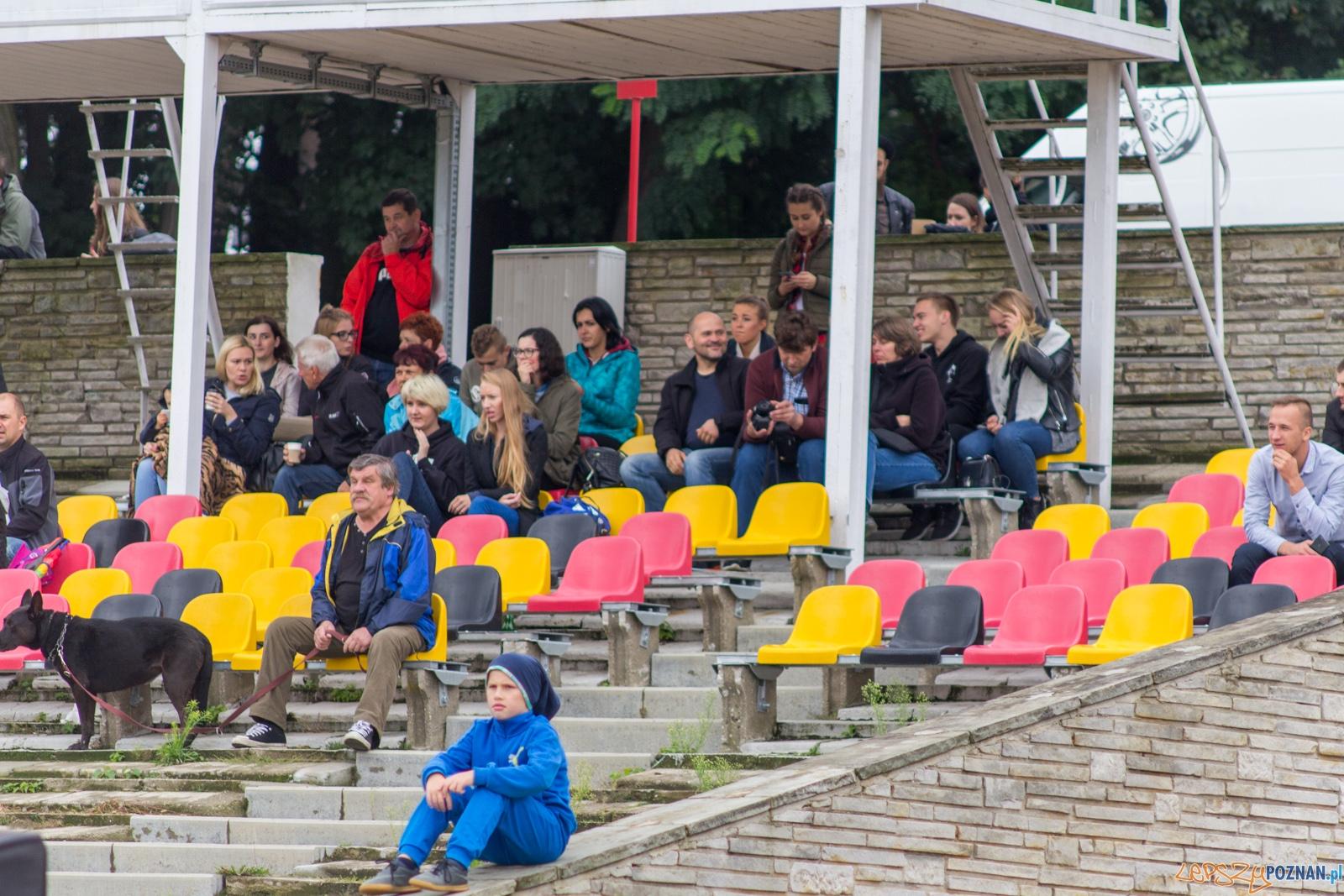 Patrioci Poznań - Tytani Lublin  Foto: lepszyPOZNAN.pl / Ewelina Jaskowiak