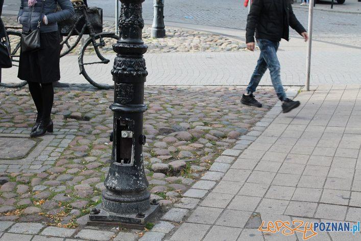 Stary Marych nieporządek wokól pomnika (2)  Foto: T. Dworek / ROSM