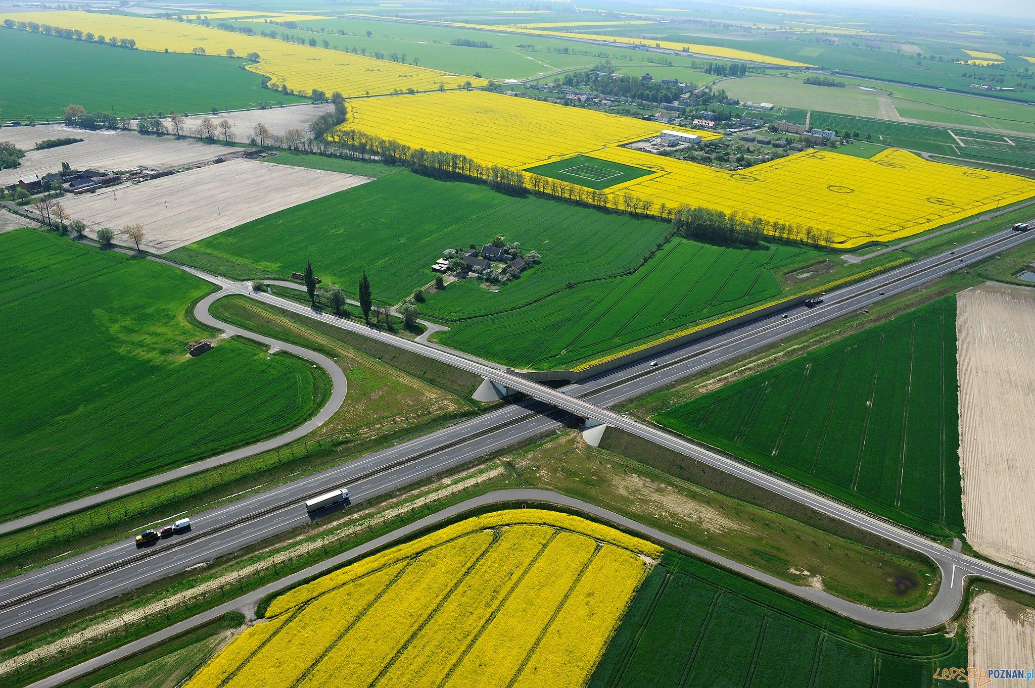 Droga wojewódzka - zdjęcie ilustracyjne  Foto: AEROFOTO  materiały prasowe