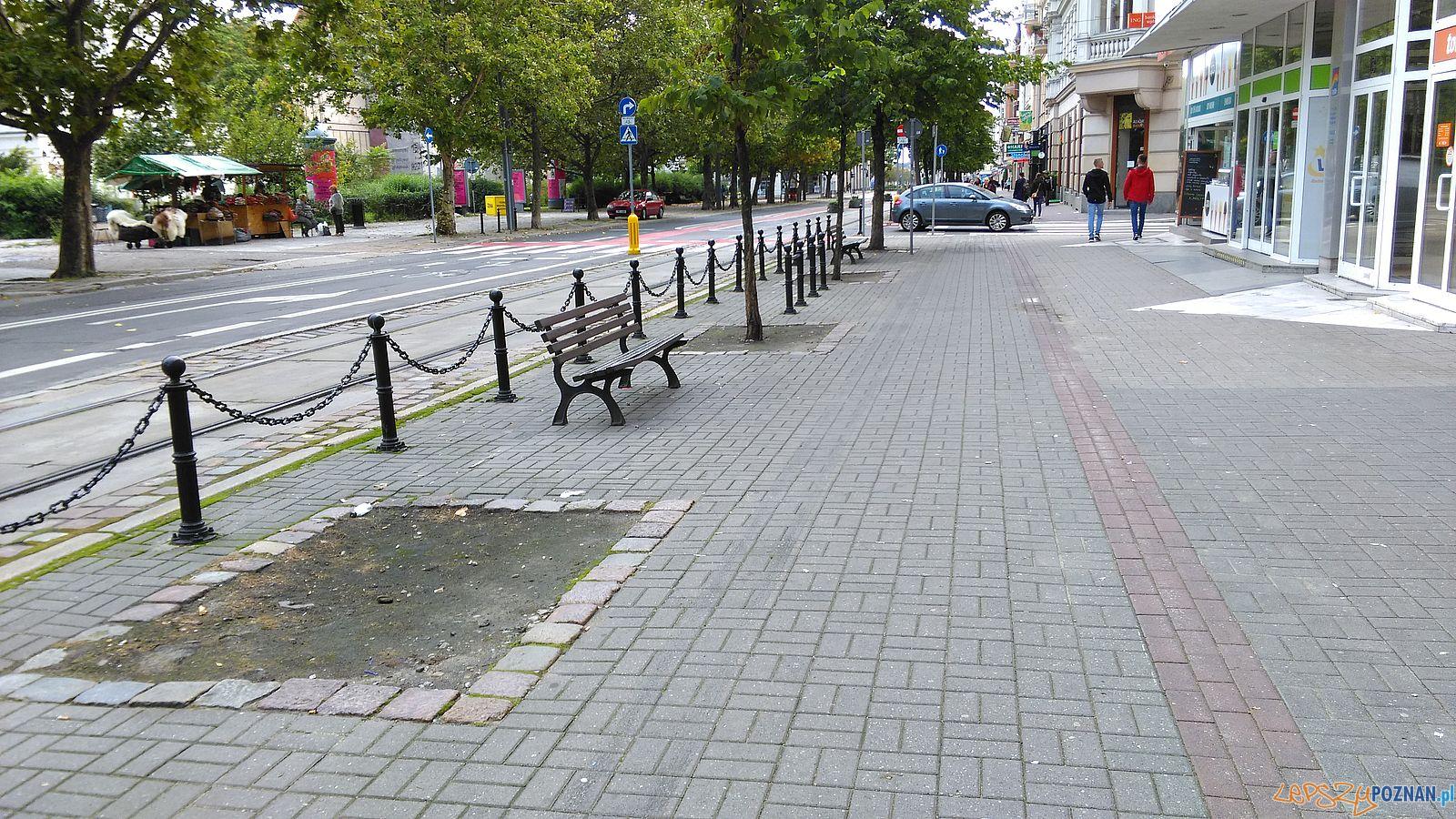 27 Grudnia - tutaj potrzebne jest drzewo  Foto: T. Dworek / ROSM