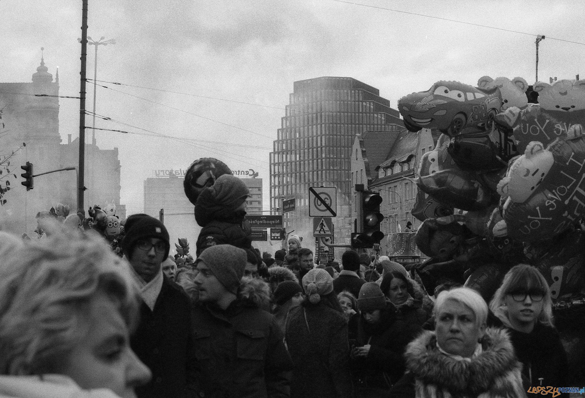 I nagroda konkursu Imieniny Świętego Marcina  Foto: Michał Rybacki