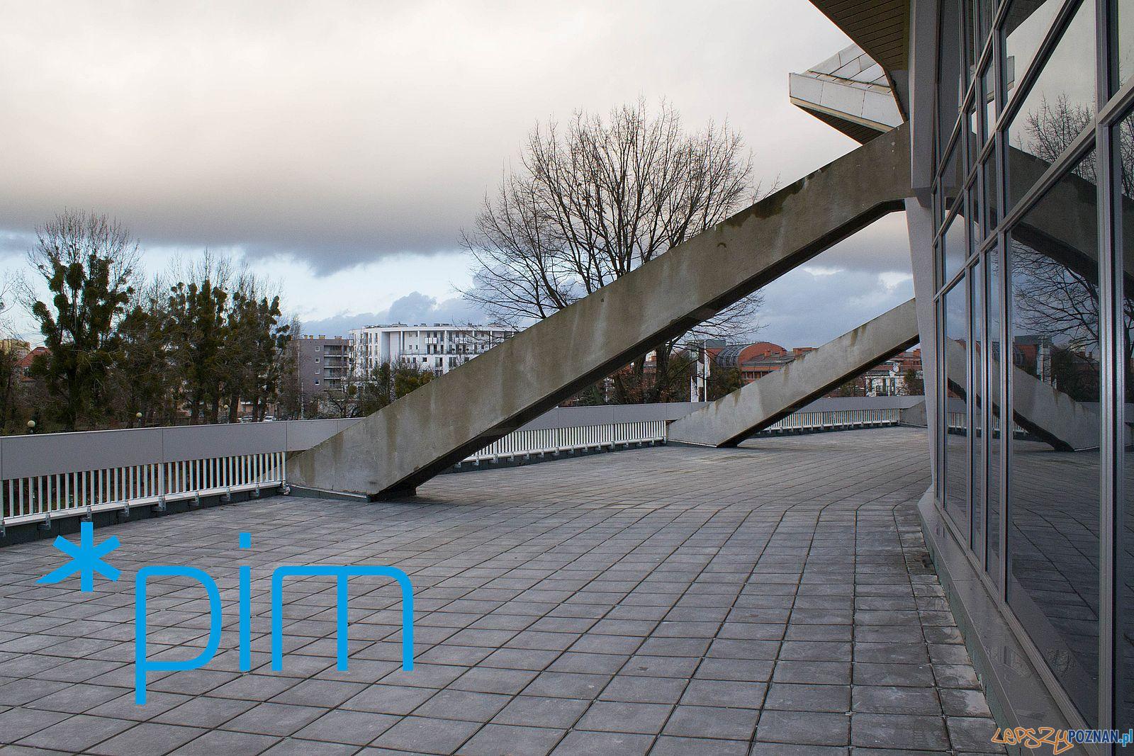 Modernizacja Areny (3)  Foto: PIM