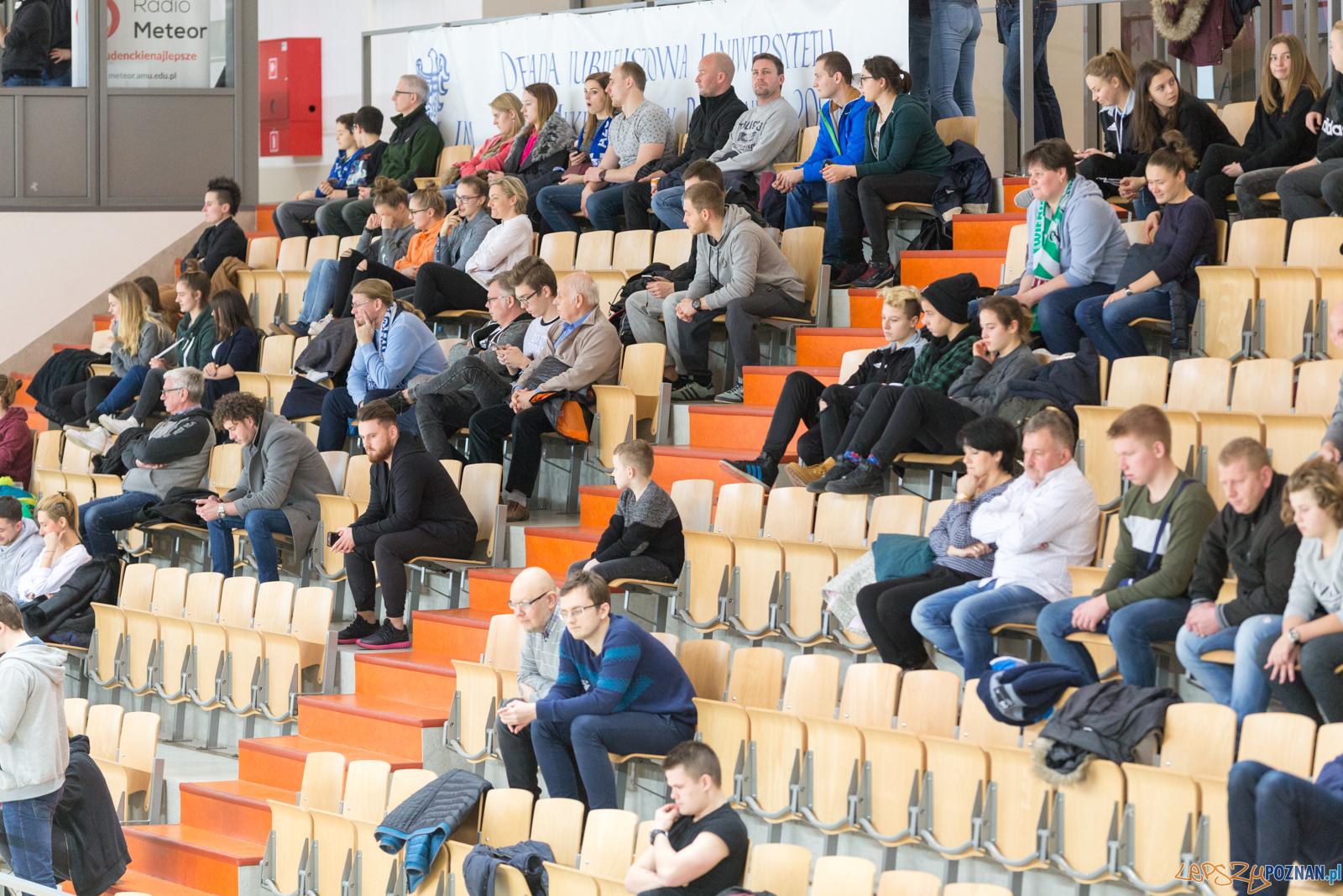 AZS UAM Poznań - Kotwica Kórnik  Foto: lepszyPOZNAN.pl/Piotr Rychter