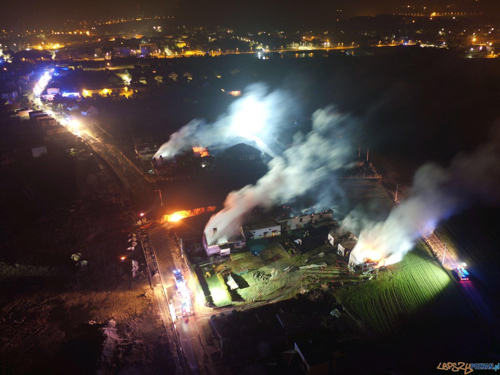 Pożar po wybuchu gazociągu w Murowanej Goślinie  Foto: Wielkopolska Policja