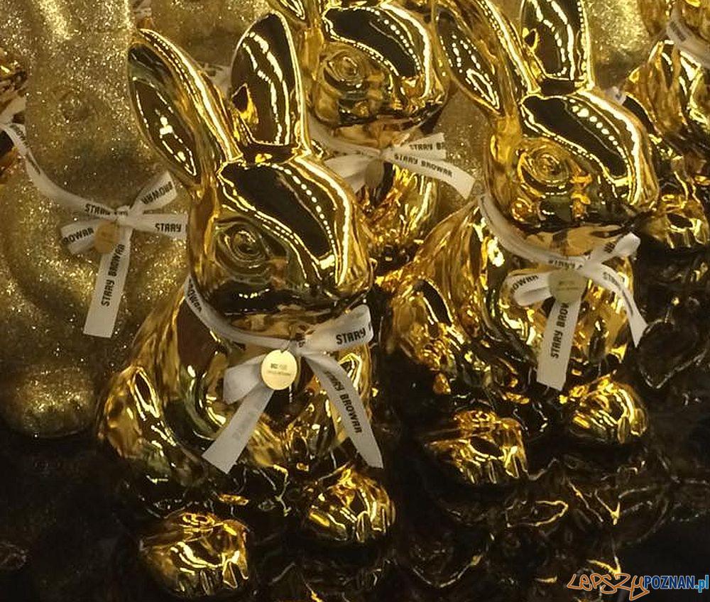 Złote zające w Starym Browarze  Foto: SB / facebook