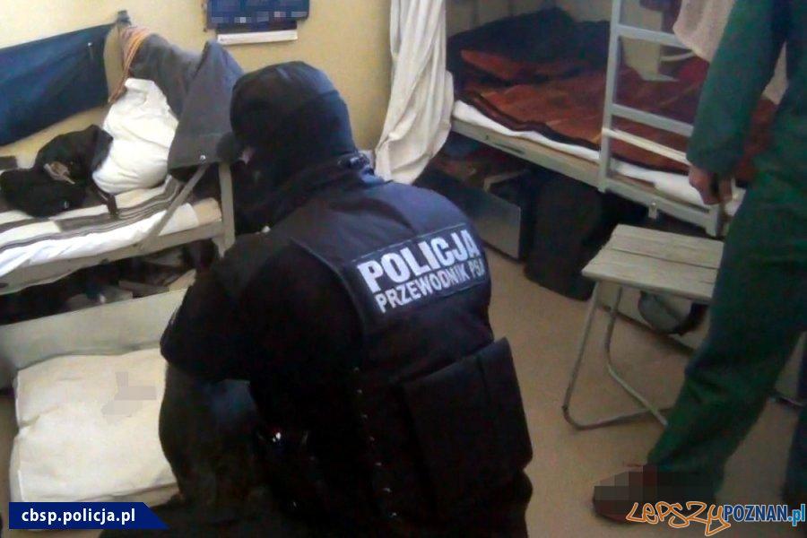 Narkotyki w ZK - akcja policji (4)  Foto: materiały Policji