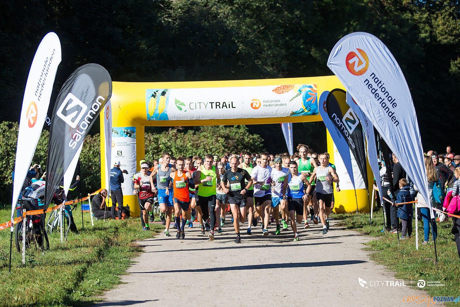 CITY TRAIL - bieganie nad Rusałką(8)  Foto: materiały prasowe