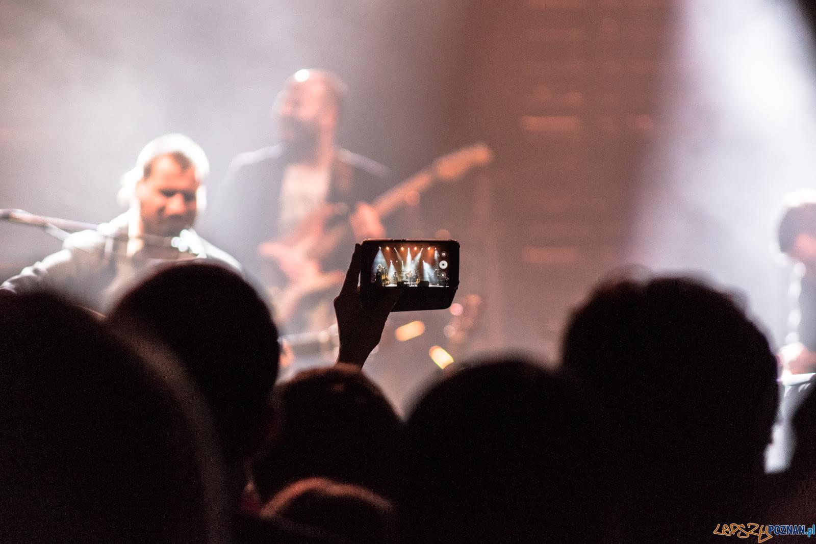 Nosowska na Tłusto  Foto: lepszyPOZNAN.pl / Ewelina Jaśkowiak