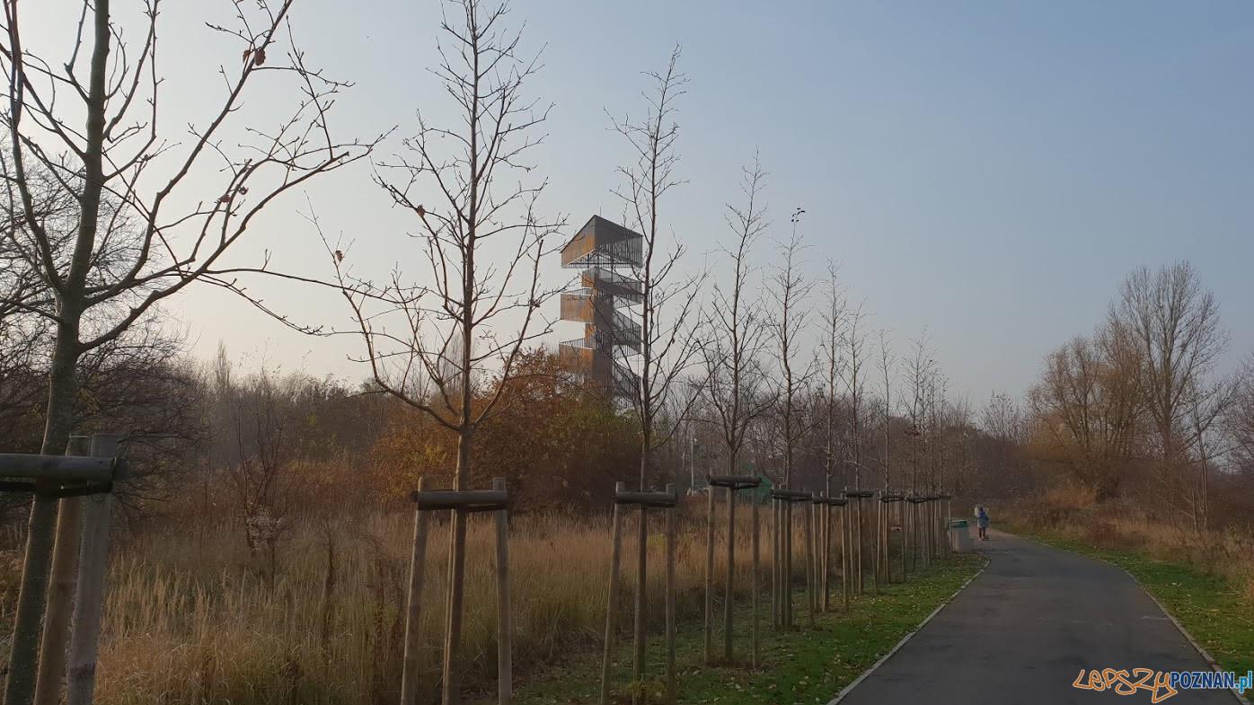 Wieża widokowa na Szachtach  Foto: lepszyPOZNAN.pl / tab