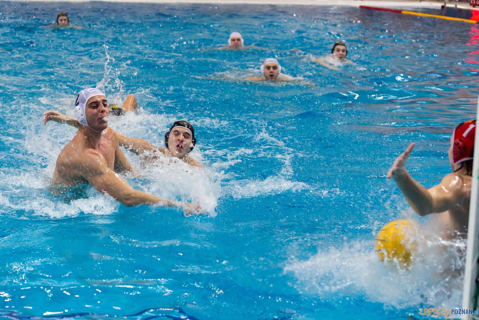 Malta Waterpolo Cup  Foto: lepszyPOZNAN.pl/Piotr Rychter