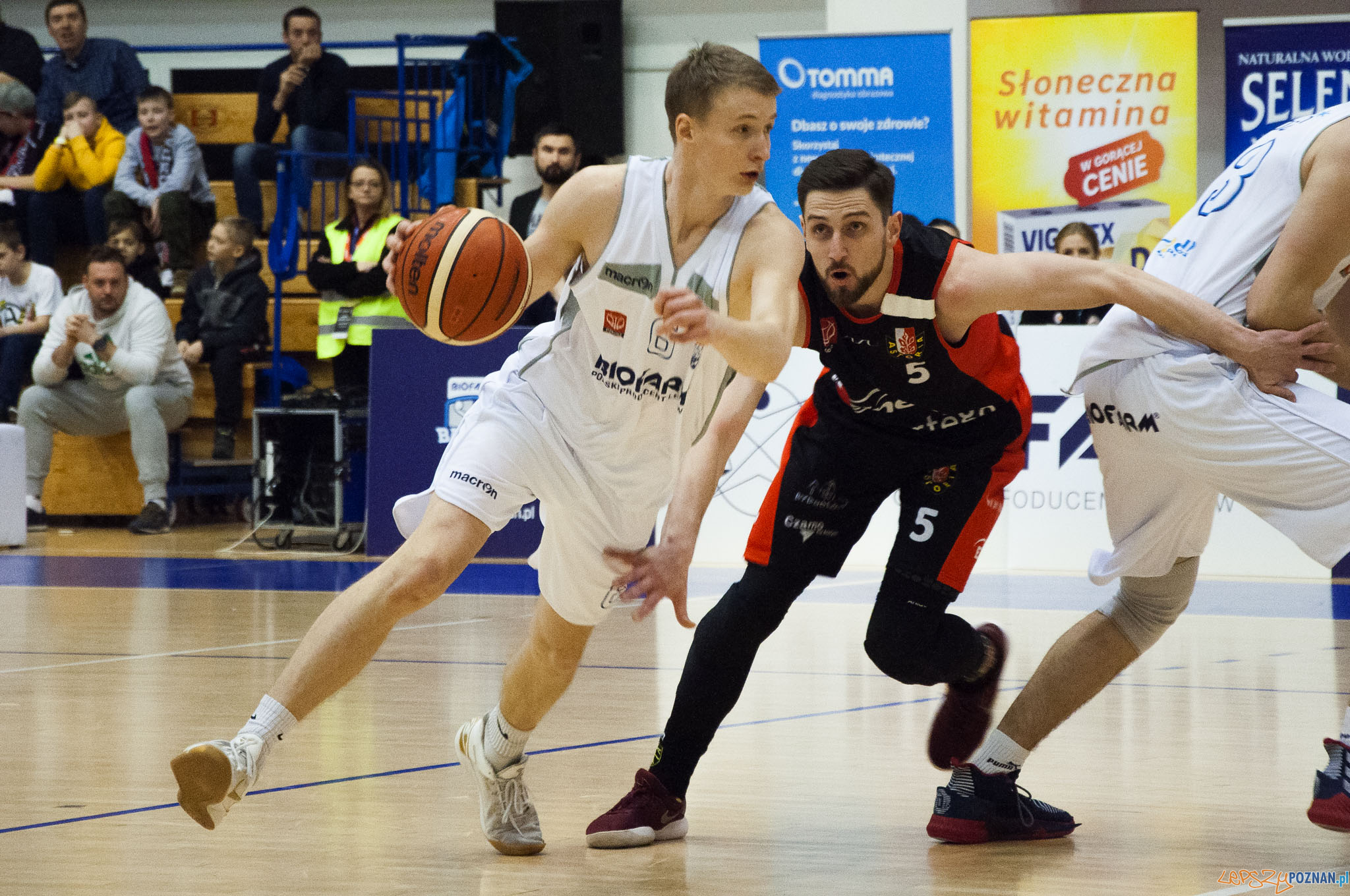 Biofarm Basket Poznan -Enea Astoria Bydgoszcz  Foto: Julian Antoniewicz