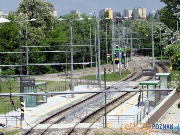 Przystanek PST Most Teatralny  Foto: materiały prasowe ZTM