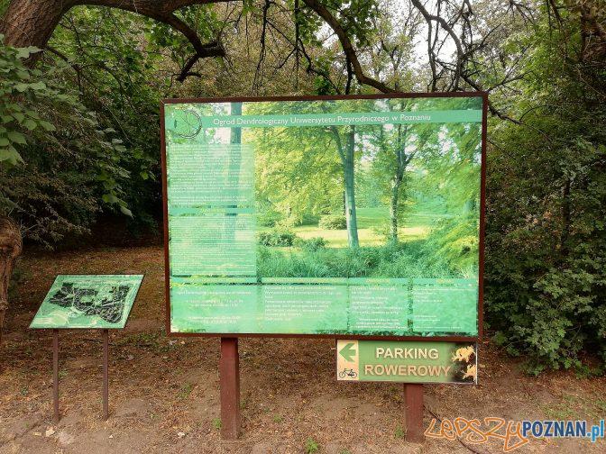 Ogród Dendrologiczny  Foto: Tomasz Dworek