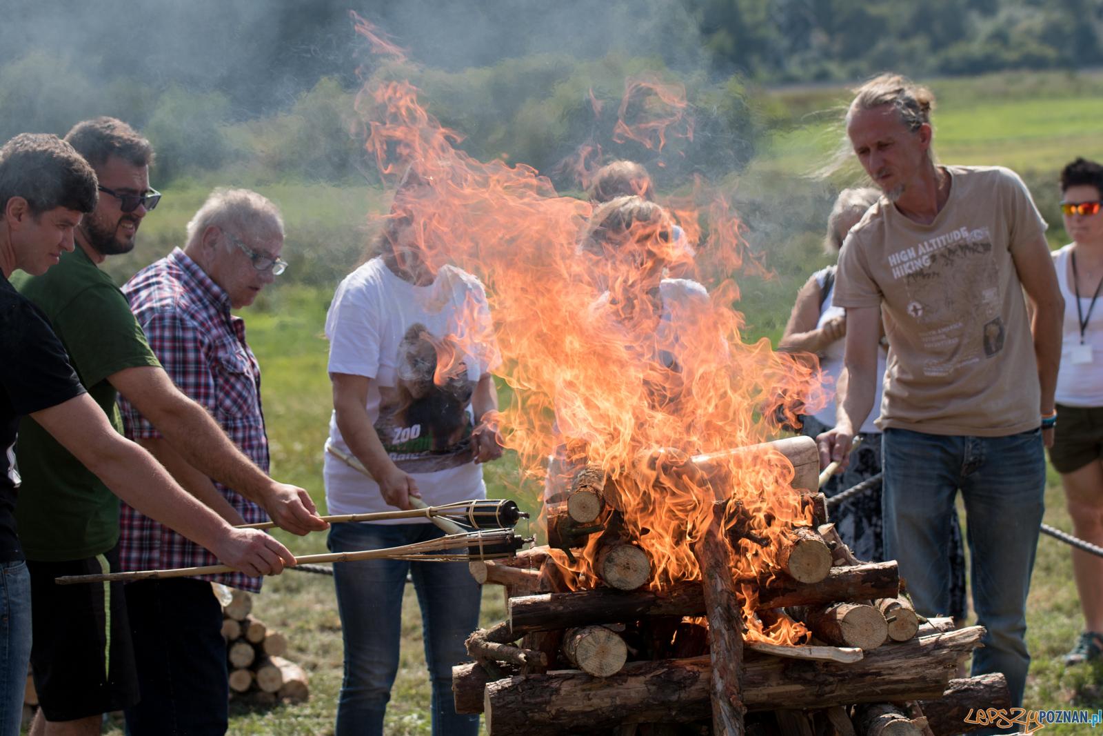 Spalenie kła słonia Ninio  Foto: lepszyPOZNAN.pl / Ewelina Jaśkowiak