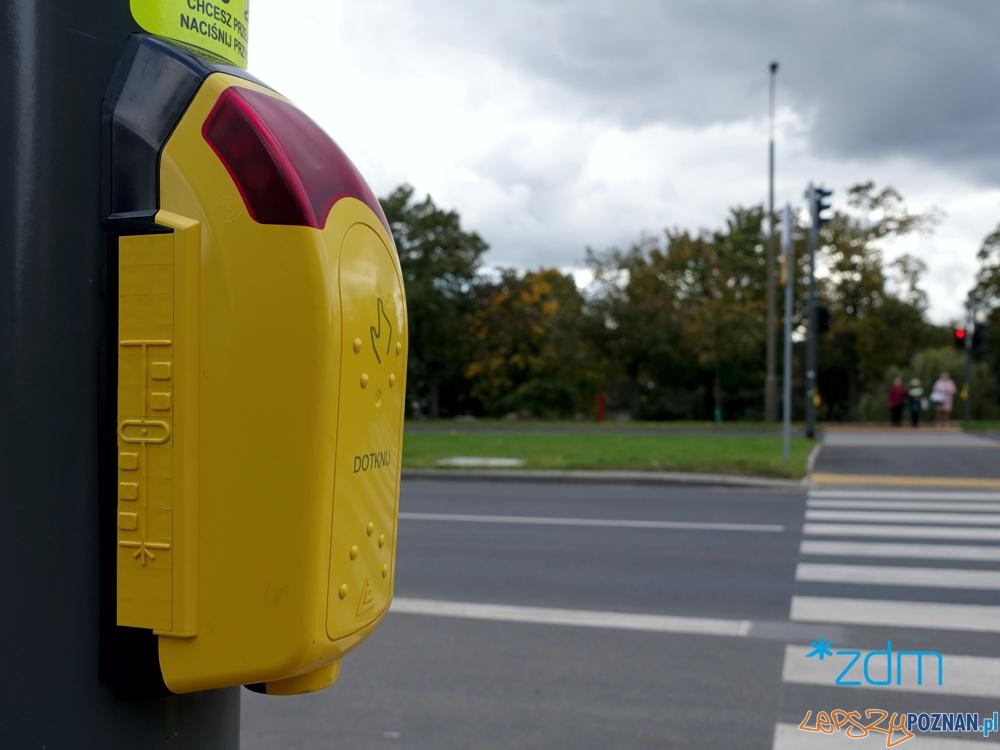 Nowe przejście dla pieszych przy ulicy Pasterskiej  Foto: materiały prasowe / ZTM