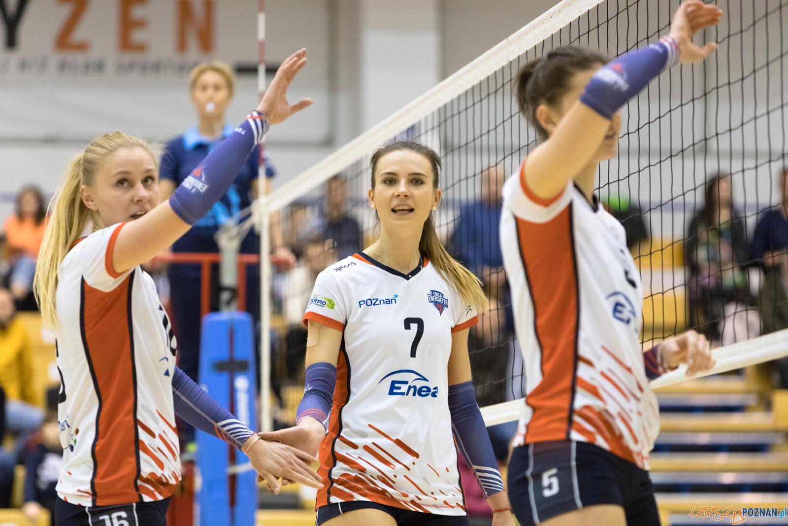 Enea Energetyk Poznań - WTS Solna Wieliczka  Foto: lepszyPOZNAN.pl/Piotr Rychter