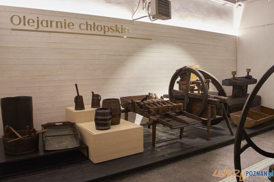 Muzeum Rolnictwa w Szreniawie (11) Foto: materiały prasowe muzeum