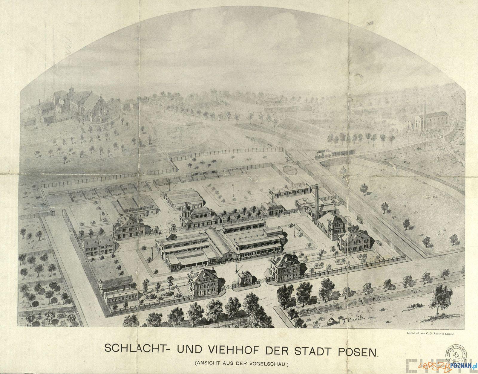 Stara Rzeźnia 1910 - plan  Foto: F. Motitz / Cyryl / Archiwum Państwowe