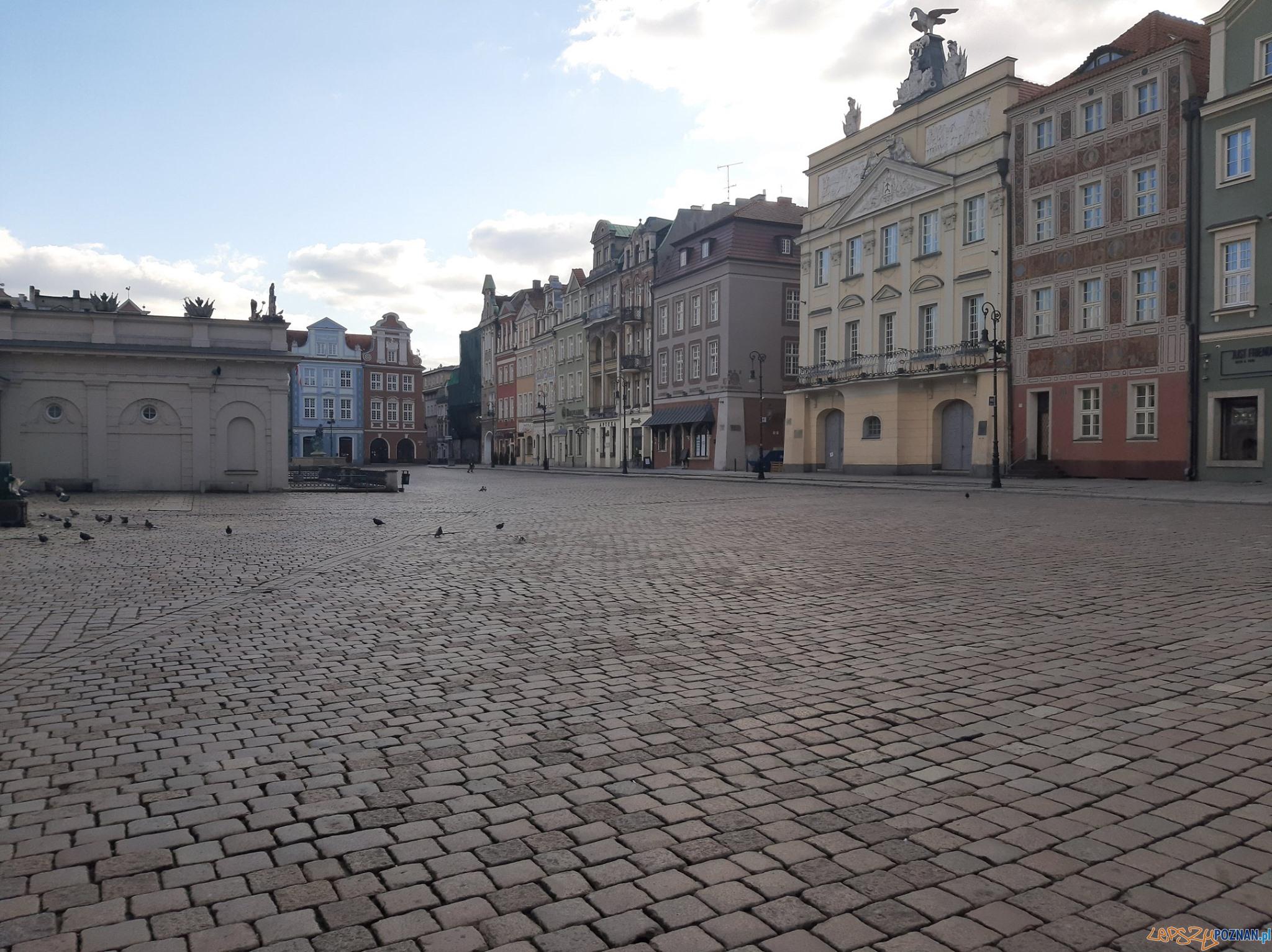 Pandemia - opustoszałe ulice  Foto: Straż Miejska m. Poznania