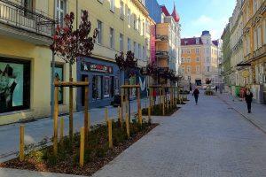 Kwiatowa z nowymi drzewami  Foto: Tomasz Dworek