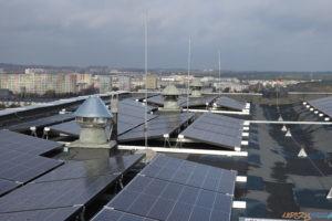 Panele w PSM Winogrady  Foto: materiały prasowe IBC Solar