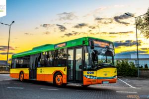 Autobus - Gmina Tarnowo Podgórne  Foto: Gmina Tarnowo Podgórne